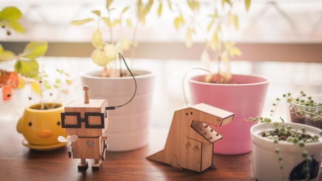 roboței te ajută să nu uiți să uzi plantele